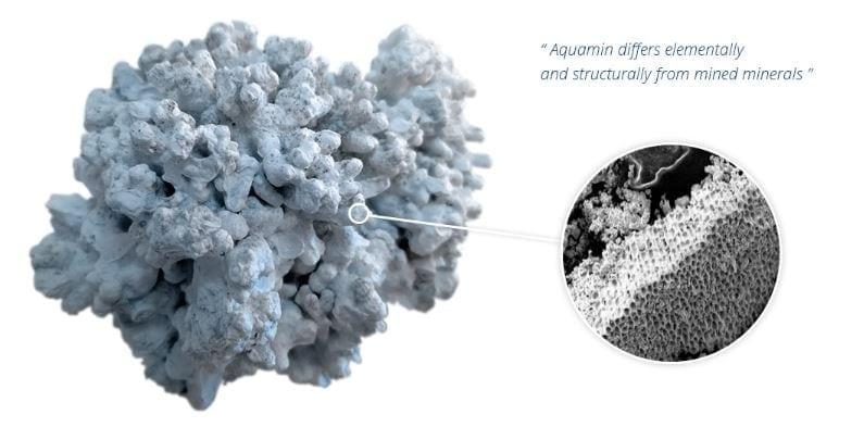 Aquamin-providing bioactive calcium, magnesium and 72 other trace marine minerals