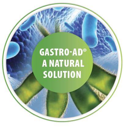 gastro aid reflux remedy