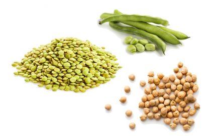 Atura Plant Proteins lentils favas chickpeas
